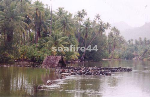 19_piège à poissons à Maeva