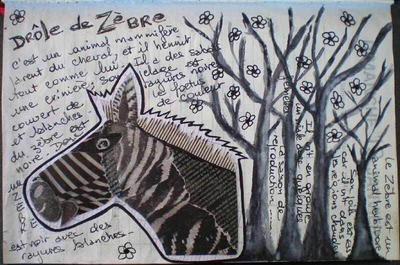 Day1-Z for zebra