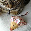 Quand le chat dort, les souris dansent
