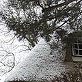 Au jardin ... paysages hivernaux