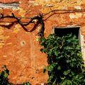 vieux murs sud