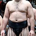 Prochaine invitation: conference sur le sumo de sebastien frigara, bibliotheque nucera nice 7 avril 2018 14h30