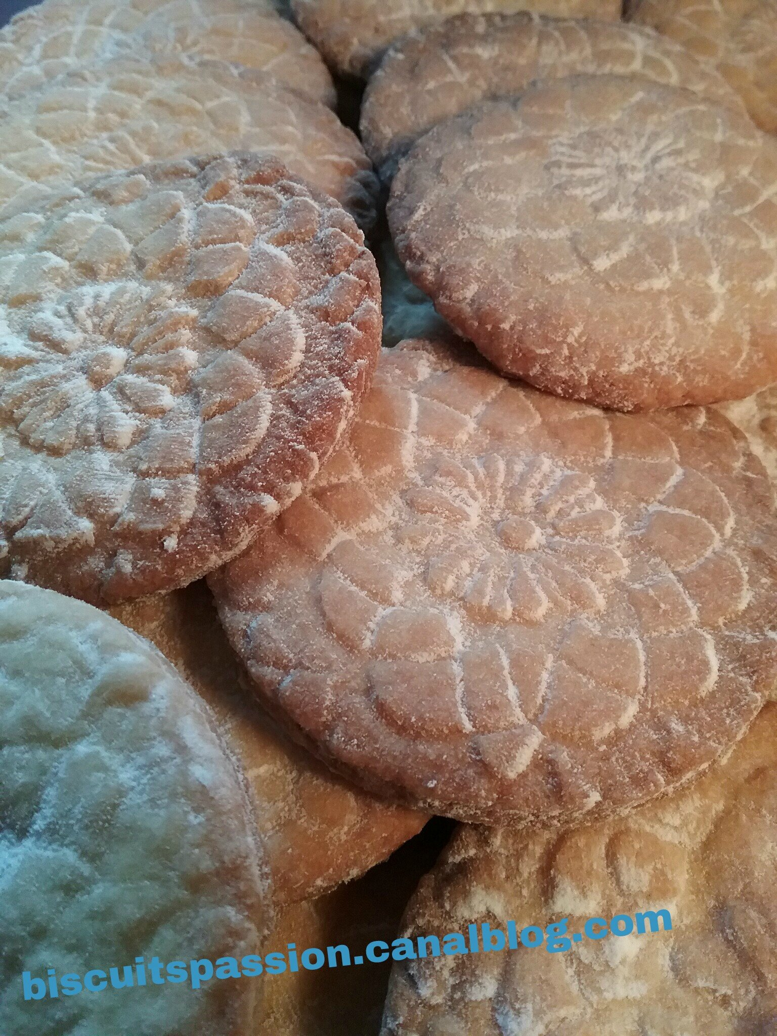 BISCUITS NAPPERON 059