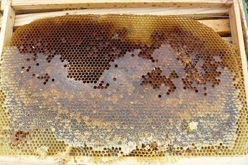 Du miel en surplus