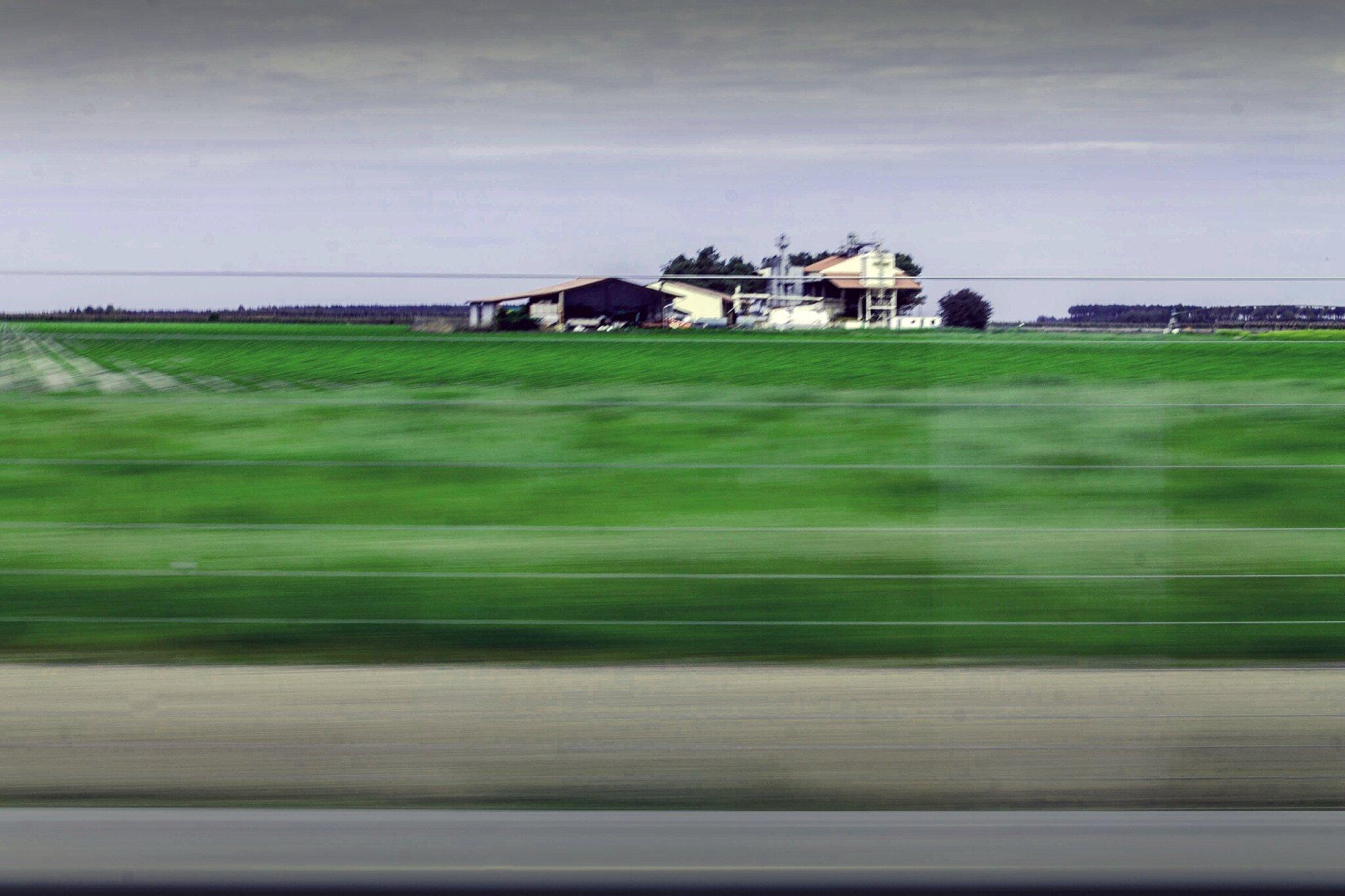 speed (1 sur 1)