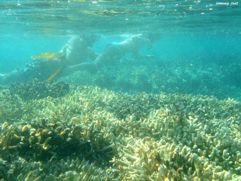 pauline phil coraux
