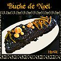 Bûche de noël au chocolat et à l'orange