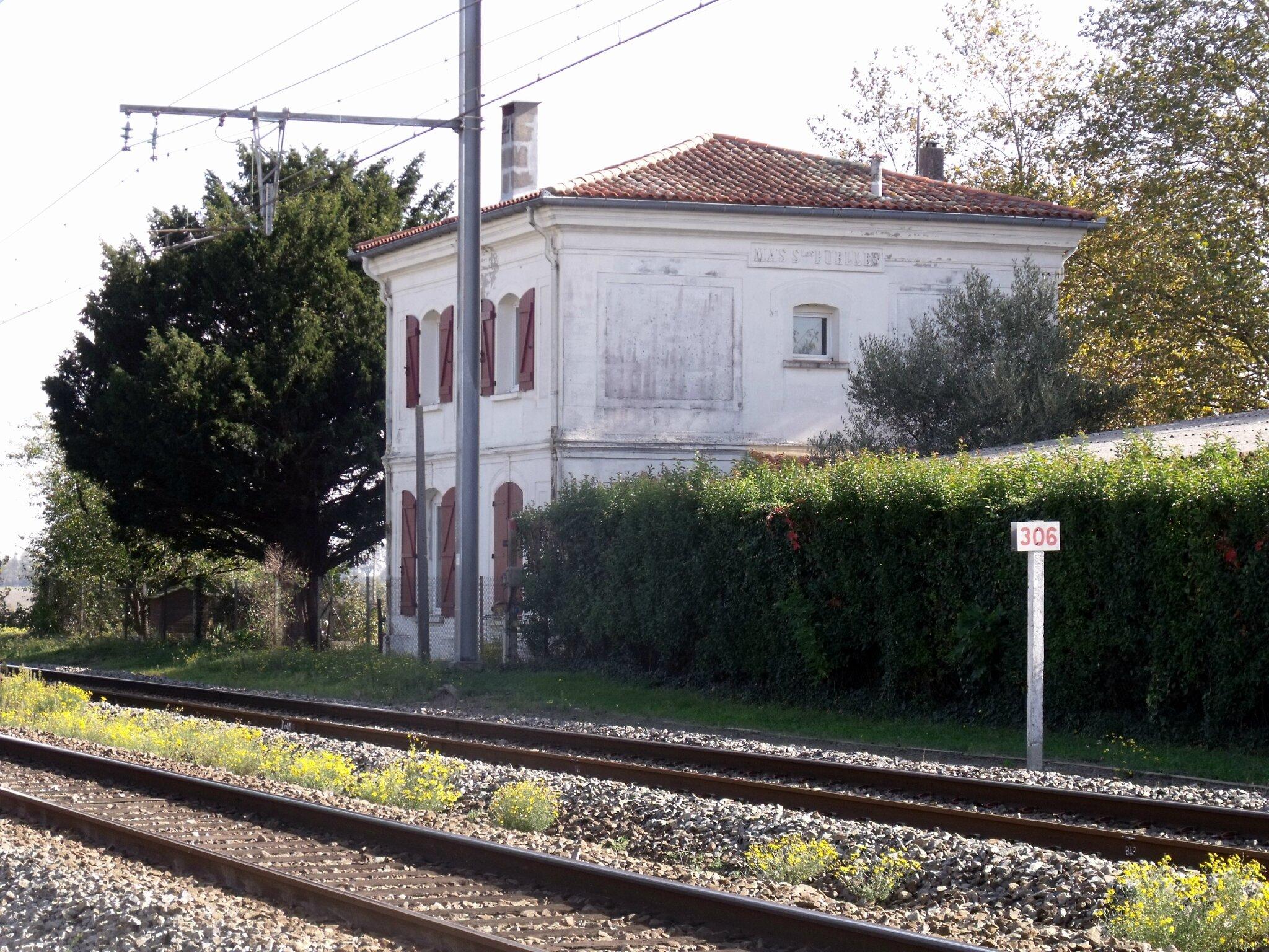 Mas-Saintes-Puelles (Aude - 11)