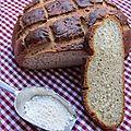 Francine - test #1 : pain à la farine milgrain