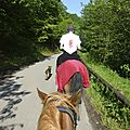 balade à cheval médiévale - Abbaye de Hambye (36)