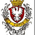 Fête nationale et 150ème anniversaire du rattachement de la savoie à la france: rumilly