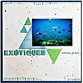 Exotiques
