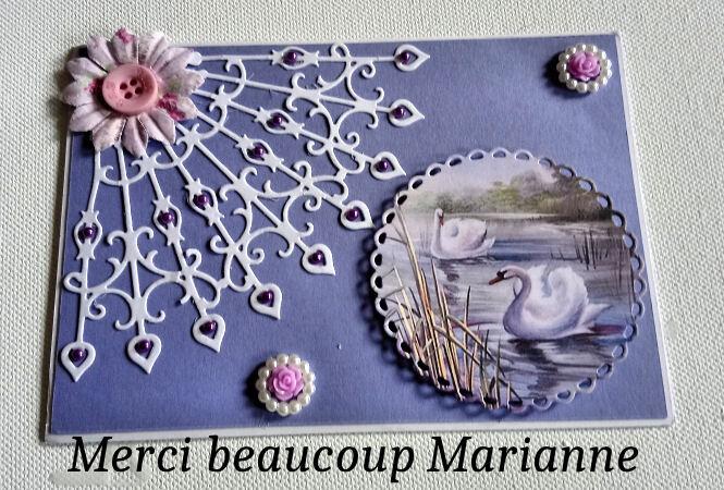 DSC_0295 RECUS DE MARRIANNE