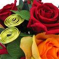 fleurs stabilisées - rose stabilisée de coeurdartichaut.com