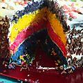 Le <b>Rainbow</b> <b>cake</b>