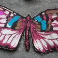 papillon_Noemie