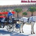 Caléche Meknes