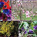 Ronde de printemps chez lylouanne