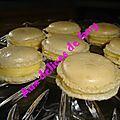 macarons citrons 039