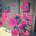 Bouquet coquelicots roses annaick