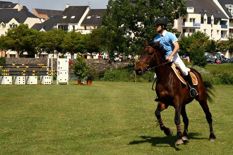 070519_066_Cheval