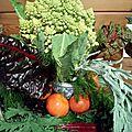 En début de l'hiver il y a encore quelques légumes