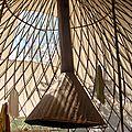 tribu vivace yurtao 31