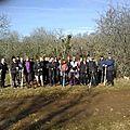 909. 18 février 2012 le bois de Verriere Causse Corrèze