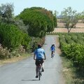 Bike Hire Canal Du Midi Location de velos Capestang Pezenas Vendres Beziers Urban bike tours