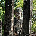 Sri lanka polonnaruwa - anuradhapura - mihintale - uppuveli