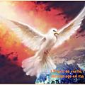 Évangile et Homélie du lundi 18 Mai 2020. Le Défenseur, l'<b>Esprit</b> de <b>vérité</b>, rendra témoignage en ma faveur