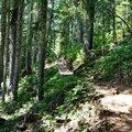 Park Butte Mount Baker Trail