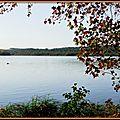 Lac de Soustons Pointe des Vergnes