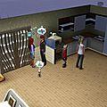 Les Sims d'Émilie