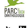 Teich Logo fini
