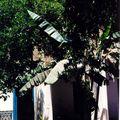 palaisbahia_patio