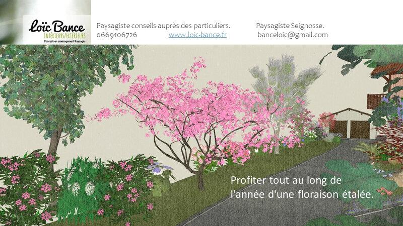 Paysagiste-seignosse-extension-maison-individuelle-et-aménagement-paysager-seignosse-6