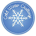 |Bilan|<b>Cold</b> Winter Challenge (2019-2020)