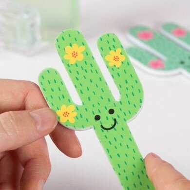 lime-ongles-cactus