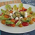 <b>Salade</b> de chou blanc aux tomates, mozzarella à l'avocat et vinaigrette mayonnaise