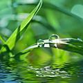 La vie intérieure est toujours différente, toujours nouvelle comme l'eau qui coule; et c'est cette eau que l'on aime