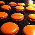 <b>Macarons</b> orange-citron,