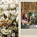 2011 en 52 pages : semaine 27 + pages du jour + freebie