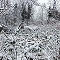 Corniche sous neige 180