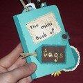 Un mini book of tag pour ma copine carpinette!