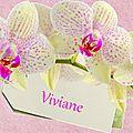 Gif orchidées (viviane)