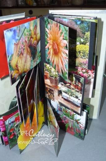 album fleurs2