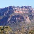 Australie Faune Flore Paysages - janvier 2005 (22)