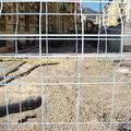chantier u tramway de nice N° 5 005