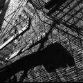 Vivian maier, l'invention d'une œuvre